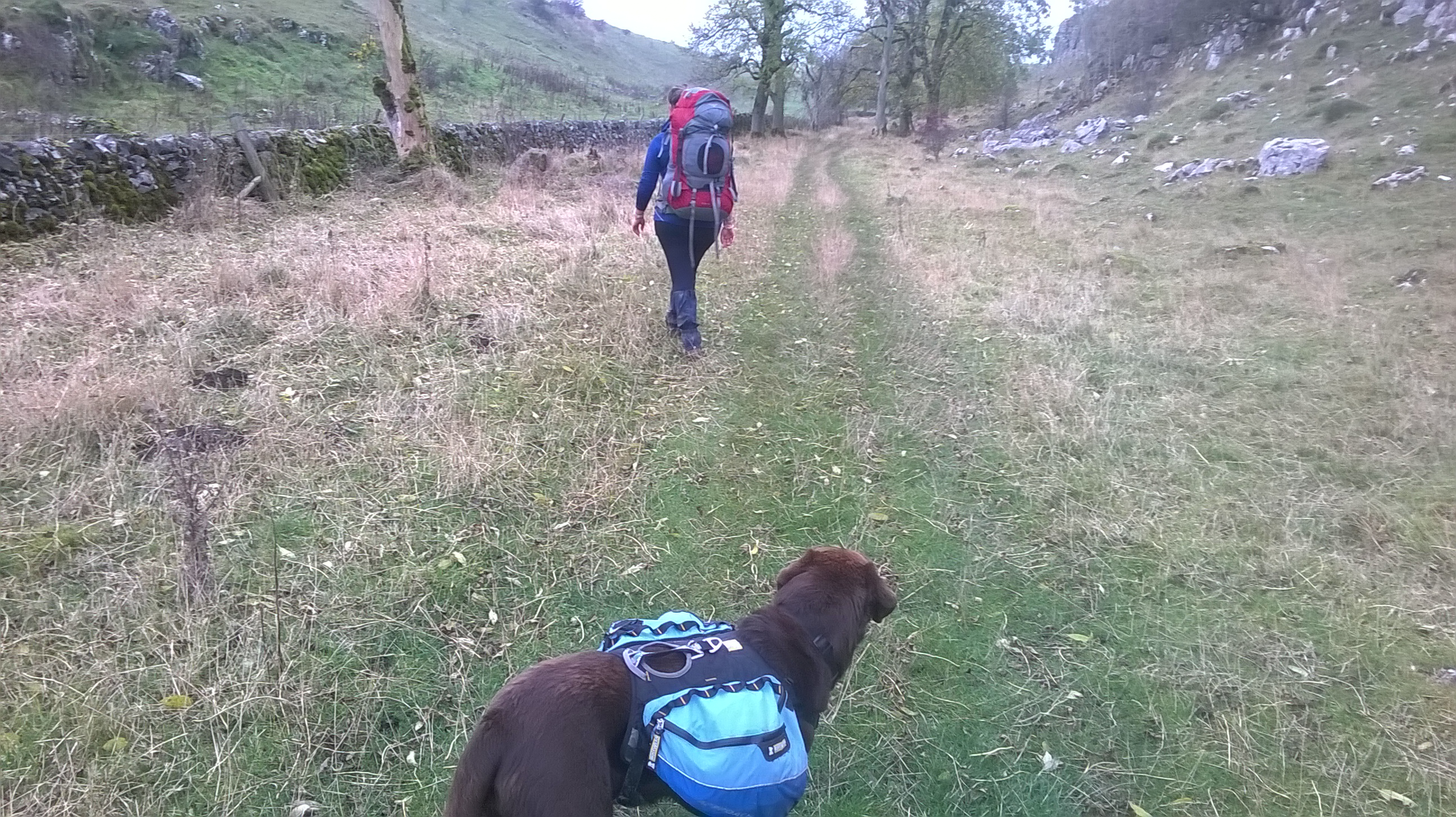 Blackwell To Hayfield – A Short, Flat-ish Backpack – Dixie