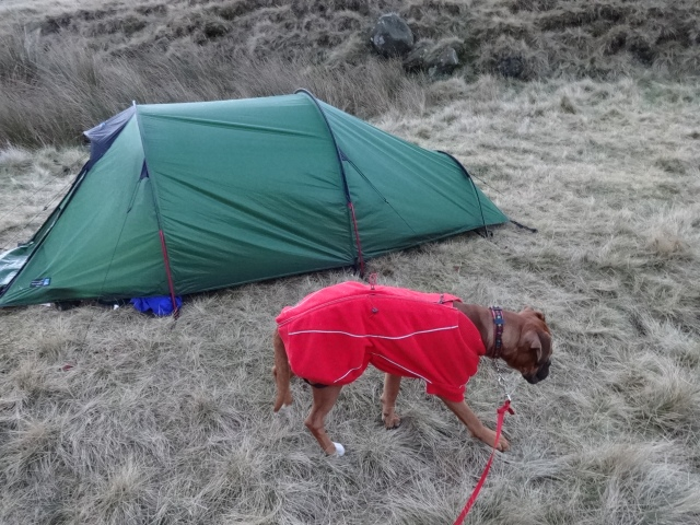 Kinder - Pebbles' first wild camp