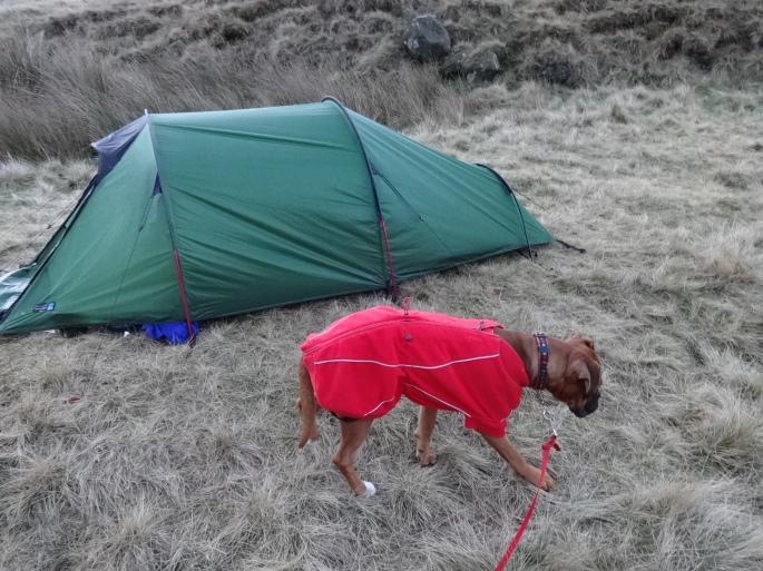 Kinder - Pebbles' first wild camp